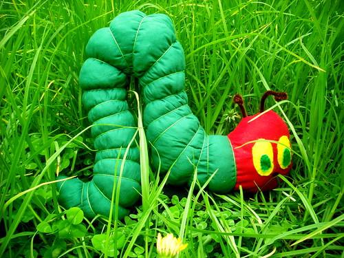 Caterpillar Softie