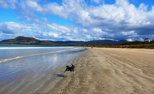 Lottie Flying at Seven Mile Beach