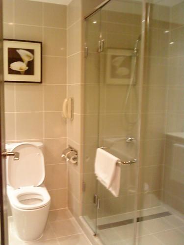 bathroom at sofitel
