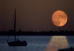 Last Sail Under a Full Moon