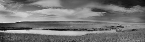 Lakeside Prairie Pano BW by you.