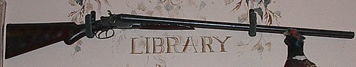 a gun around the word library