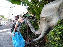 Lindsay pretending to kiss the elephant - DSCN6593