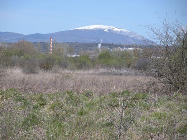 Foto 4 - Gorbea nevado desde Salburua
