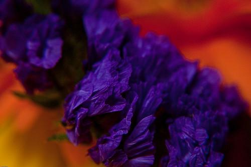 Colors 002