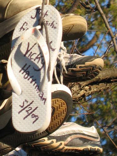 Shoe tree, Durham Road 23, south of Beaverton, Ontario © jbcurio