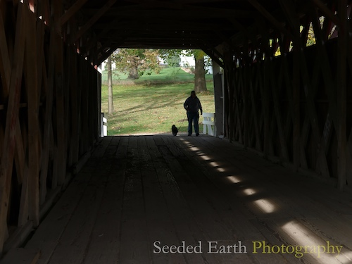 Covered Bridges have Great Shadows