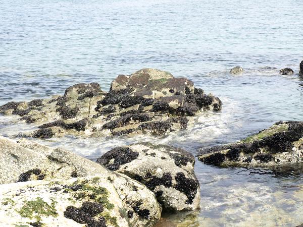 深久保漁港