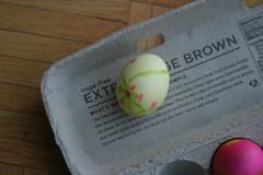 My Favorite Egg