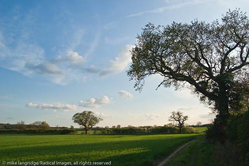 Rural Bedfordshire _G105162