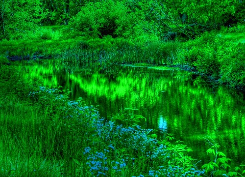 Spring Greens and Blues