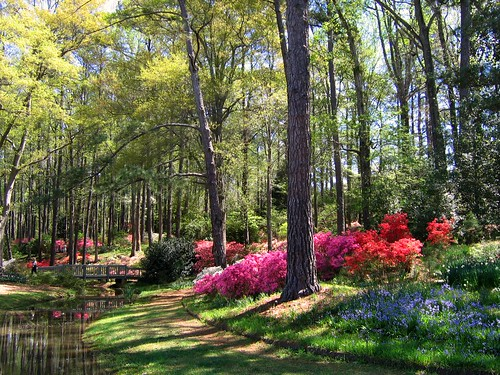 Early April in Georgia's Callaway Gardens