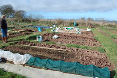 090301-allotment018