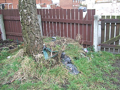before - the (garden) rubbish heap by the gate. This is ugly and an eyesore - Im determined to get it shifted this year.