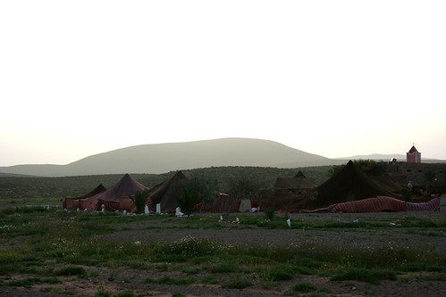 Bedouin tents