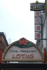 Der Lotus ohne Garten