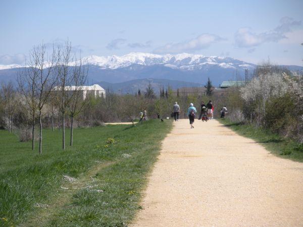 Foto 9 - Camino con las montañas nevadas