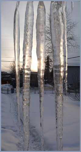 Icicles, and my back yard with two feet of snow still! Arrgh!!!