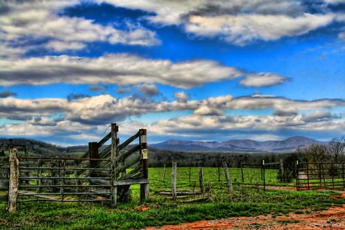 Blue Ridge Cattle Land