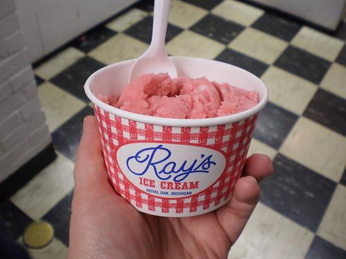 Ray's Raspberry Sorbet
