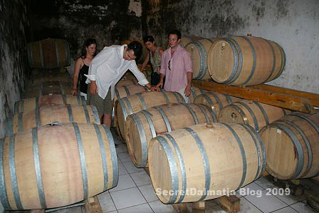 Family Villasenor from California, learning about local wines
