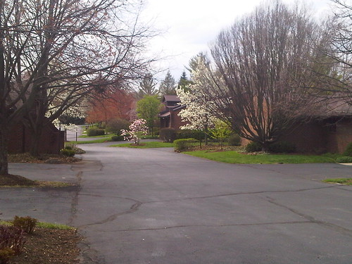 Spring Time in Cincinnati