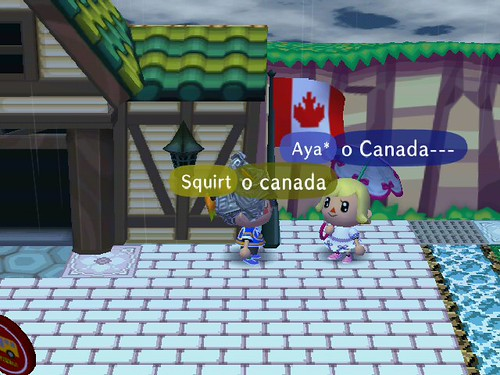 The Canadian Flag!