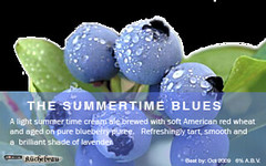 The Summertime Blues