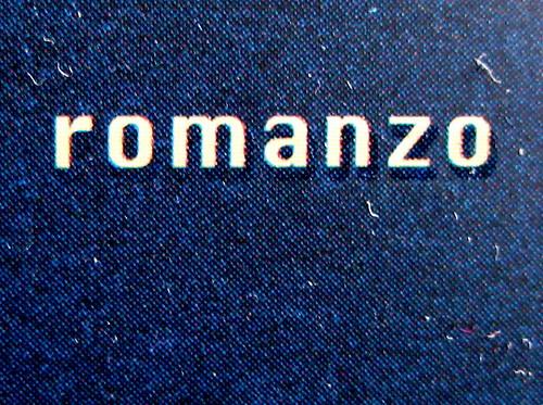 Nicola Lecca, Il corpo odiato, Scrittori italiani e stranieri / Mondadori, 2009. Giacomo Gallo / Nadia Morselli, ph. Allan Jenkins: cop., (part.) 4