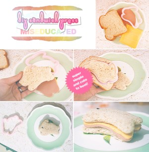 sandwich press how-to