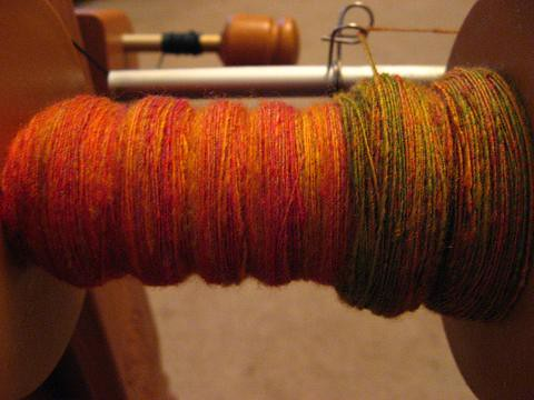 Bobbin #5 of Parrots roving