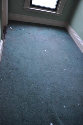 More disgusting carpet