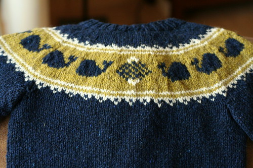 Pod of Cetaceans Cardigan, back yoke