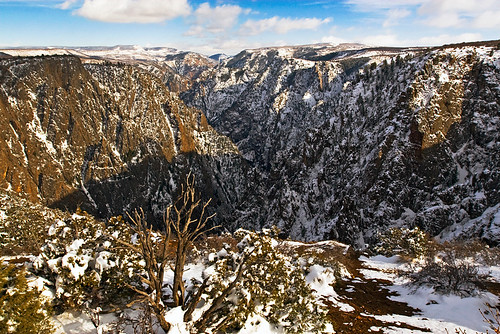 The view from Gunnison Point on the south rim.