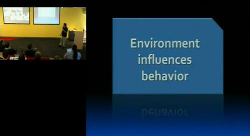 StackOverflow environment behavior