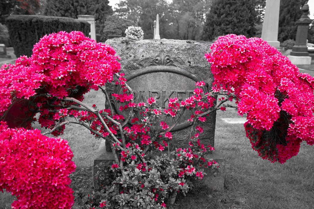 Flowery grave