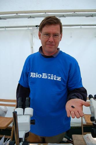 David Scott Langley, Scientist