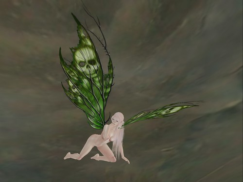 """Thistle Scripted Wings in """"Absinthe"""""""