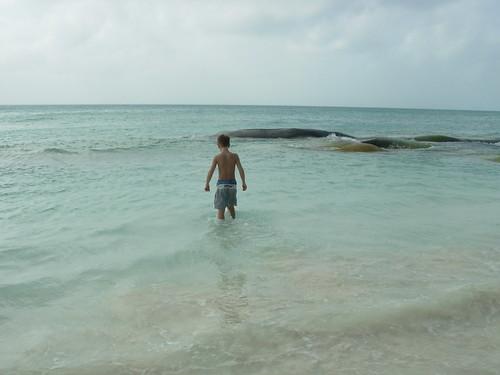 isla mujeres trip 2009 084