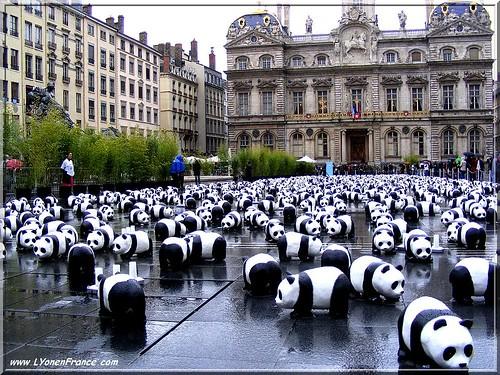 1600 pandas place des Terreaux, Lyon (France)
