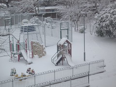 Snow Day 02-02-09 (4)