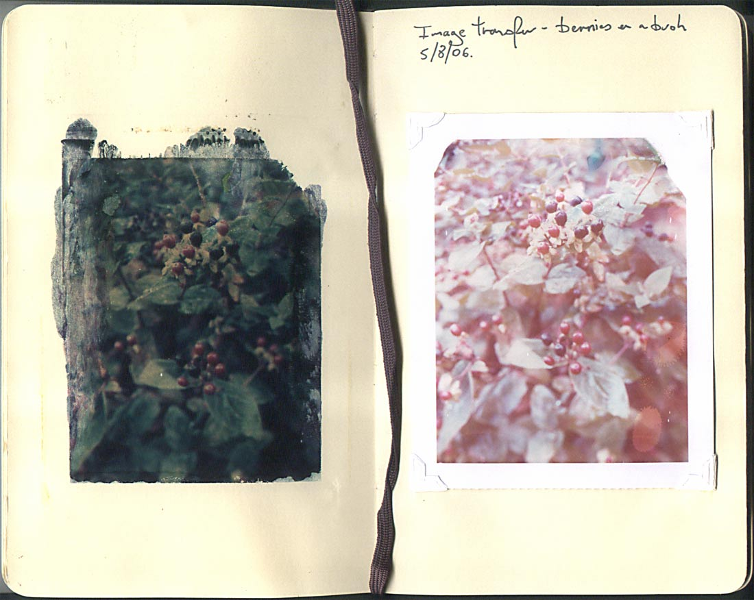 Shot on Polaroid 4x5 Type 59 film. Cambo monorail camera, with Kodak Aniton lens. Image transfered into Moleskine sketch pad (left) remaining print image fixed into pad (right)
