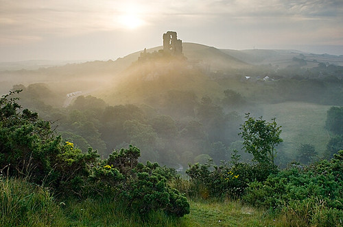 Corfe Castle at sunrise on summer morning from West Hill: o.ivanchenko on Flickr (Click image)