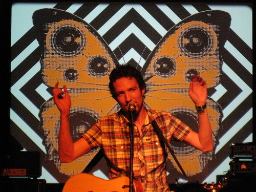 Frank Turner is a butterfly!