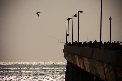 People Fishing