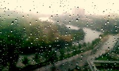 Monsoon first rain drops lingers on the office...