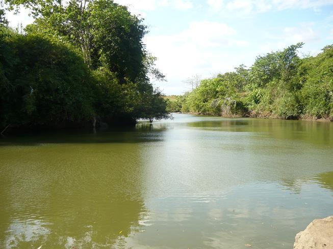 Sông Ray êm đềm