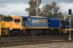 Shortly after arriving from Victoria, XR559 is sandwiched between a pair of 81 Class at Cootamundra. 8/6/09