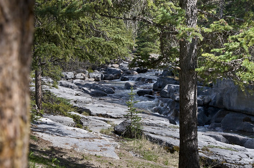 View of the Rapids at Maligne Canyon