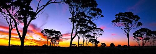 Australischer Sonnenuntergang
